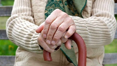 Hospital to provide free check-ups consultation for Alzheimers