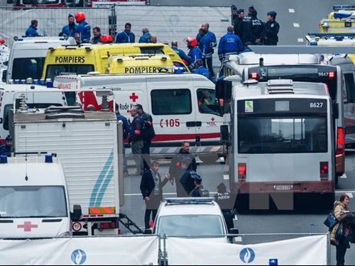 VN embassy sets up hotlines after Brussels attacks
