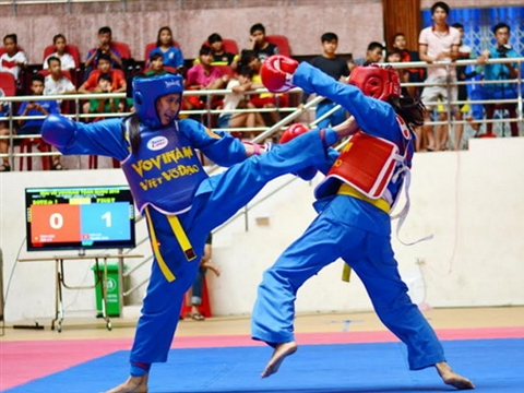 Intl martial arts festival comes to HCM City