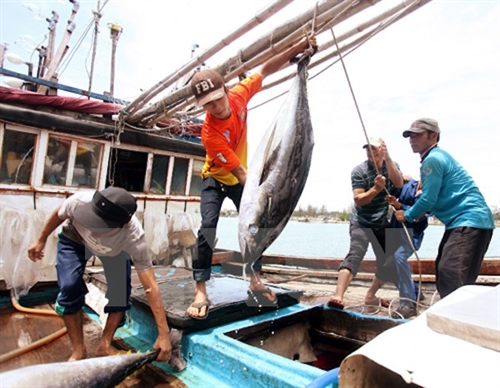 Thailand to receive Vietnamese workers for fishing construction
