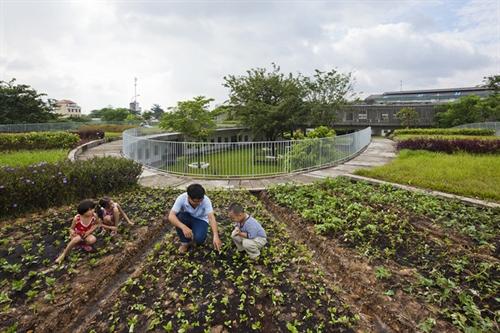 VN kindergartens design draws plaudits