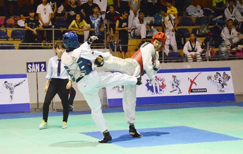 Taekwondo tournament attracts 400 martial artists