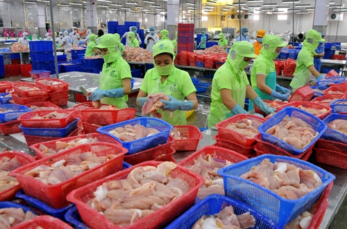 US allows more VN catfish imports