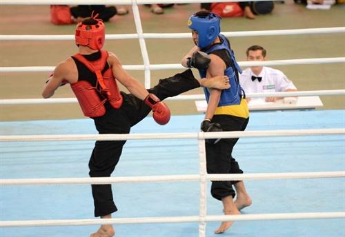 HCM City triumph at national martial arts event