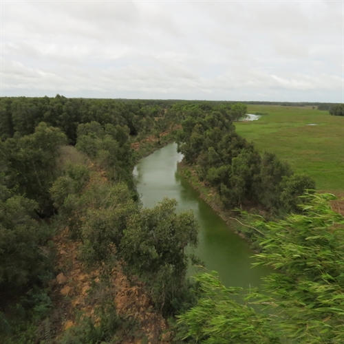 Rains provide relief to parched wetlands