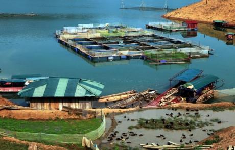 Reservoirs facilitate aquaculture
