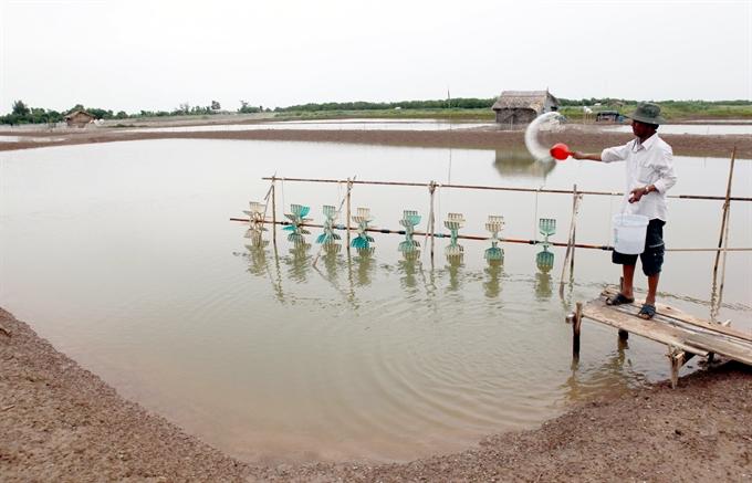 Mekong Delta waits for floods