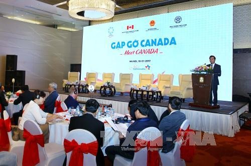 Việt Nam Canada discuss co-operation
