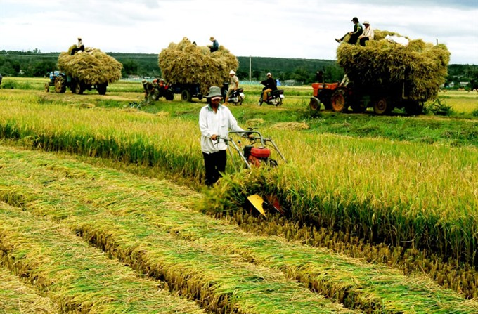 Agriculture need more investments and technology say experts