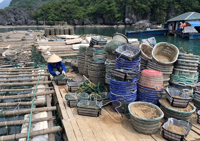 Quảng Ninh okays sand exploitation for aquaculture