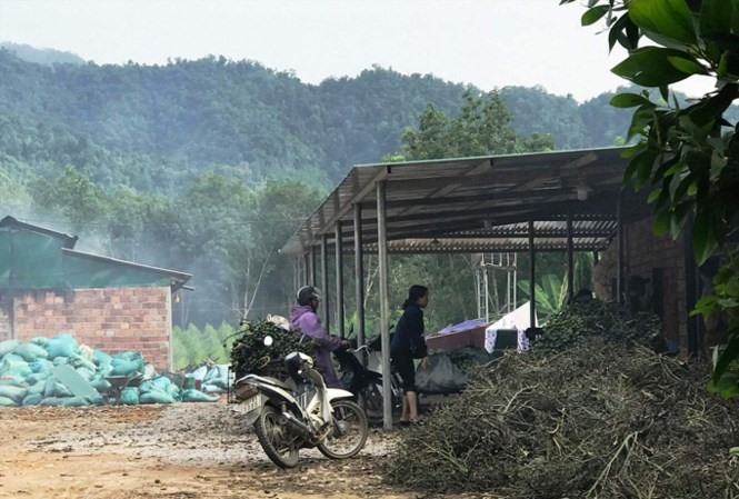 Bình Thuận proposes reduction of titanium mining