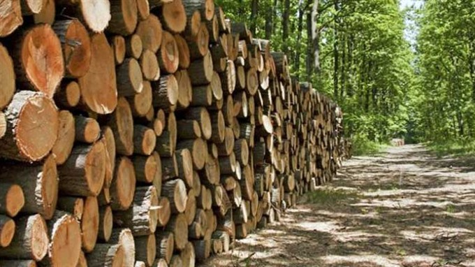 APEC moves to save forests