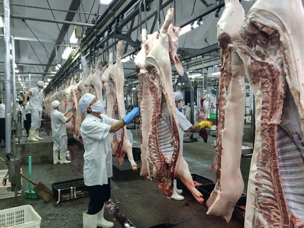 Traditional slaughterhouses in HCM City ordered to close