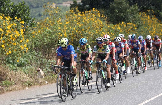 Nghĩa wins sixth stage of cycling race