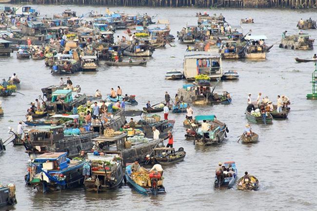 Cần Thơ becomes popular among Japanese tourists