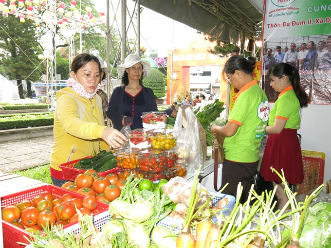 2nd Ornamental Fish Festival opens in HCM City
