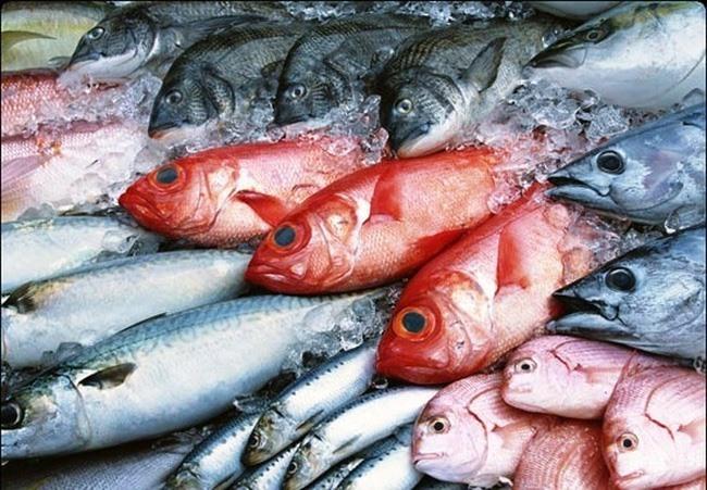 Company stopped from burning Formosa contaminated fish