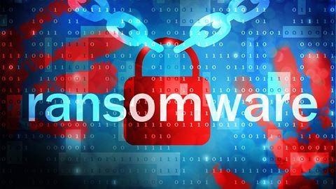 Vietnamese users lose 540 million from viruses: Bkav