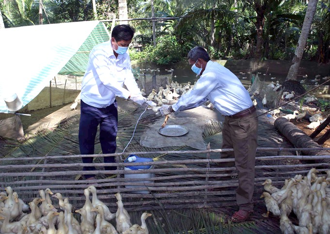 Threat of bird flu hangs over Mekong