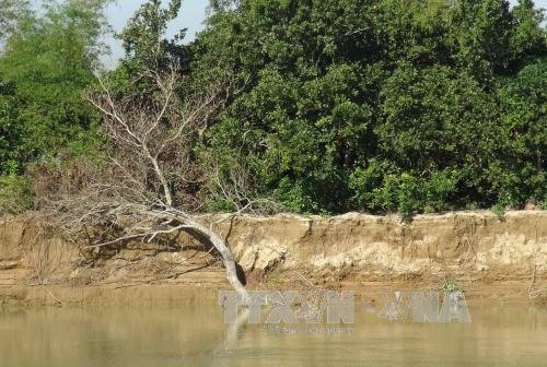 Erosion threatens peoples lives in Nha Trang City