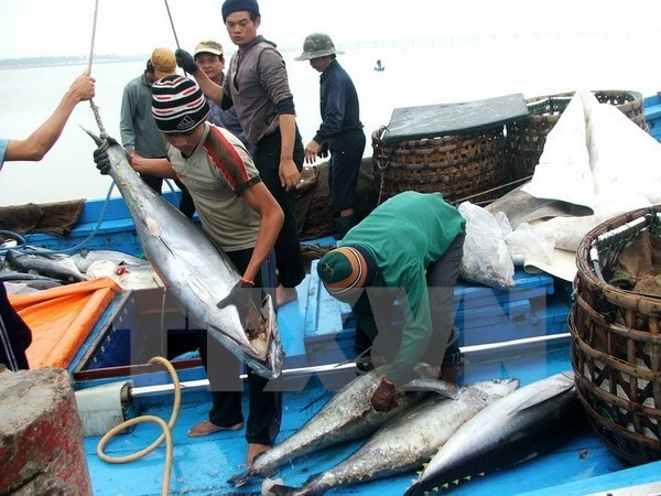 Get Japan to remove tuna import duty: exporters