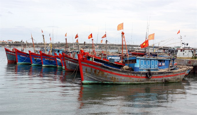 Co-operation needed to safeguard East Sea fisheries: experts