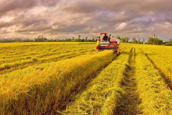 Changes needed to ensure sustainable agriculture