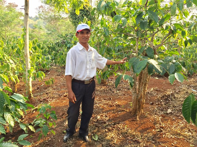 Deal to revive coffee industry