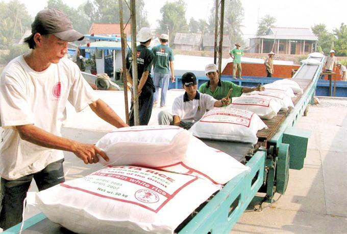 VN rice firms chafe at China import limits