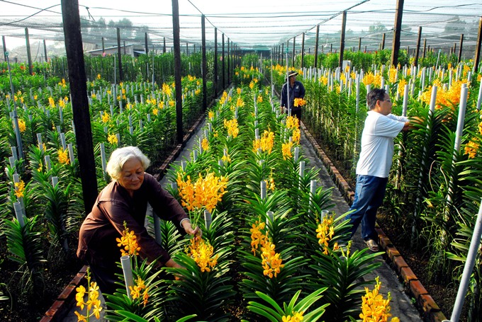 City aims to lead country in hi-tech agriculture