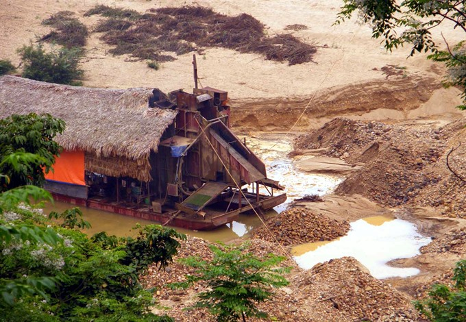 Illegal gold mining scourge