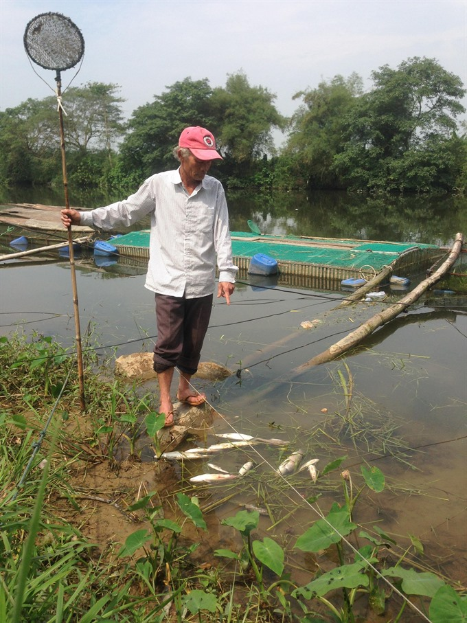 Mass fish deaths reported in fresh water cages