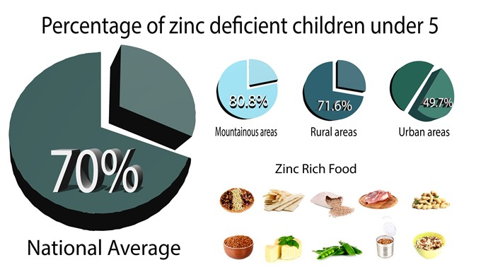 Zinc deficiency rampant in VN women children