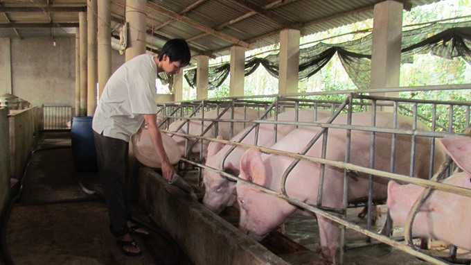 VN Denmark exchange lessons in food control