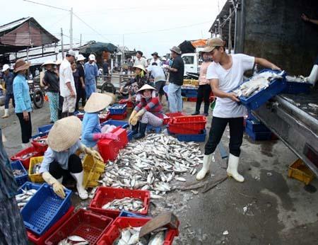 Bà Rịa-Vũng Tàu to get fisheries centre