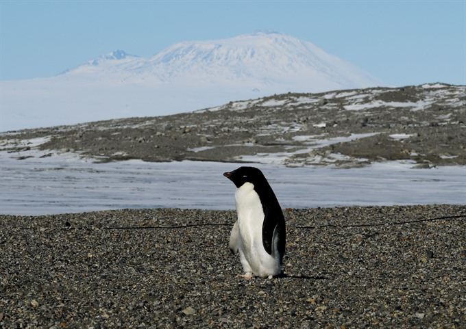 Ice loss in southwest Antarctica may be slower than thought: study