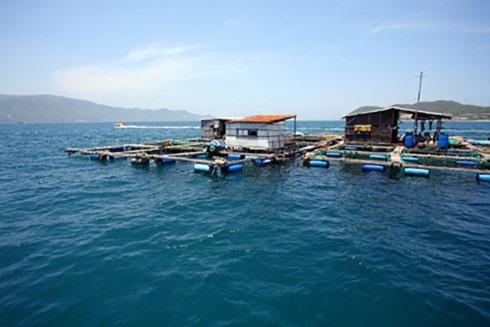 Nha Trang authorities reaffirm ban on floating restaurants