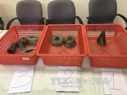 Smuggled rhino horns seized at Tân Sơn Nhất Intl Airport