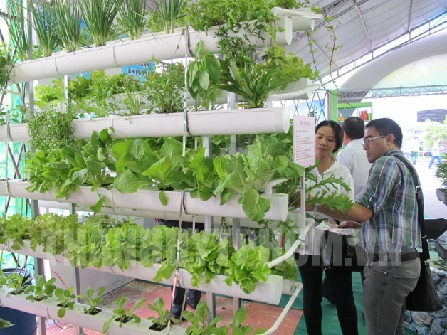 Seeds fair opens in HCM City
