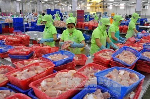 All catfish shipments to US subject to examination