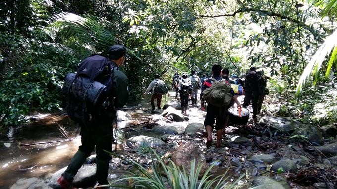 Bạch Mã Park to host saola breeding centre