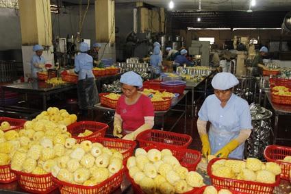 Italy Viet Nam seek to promote trade
