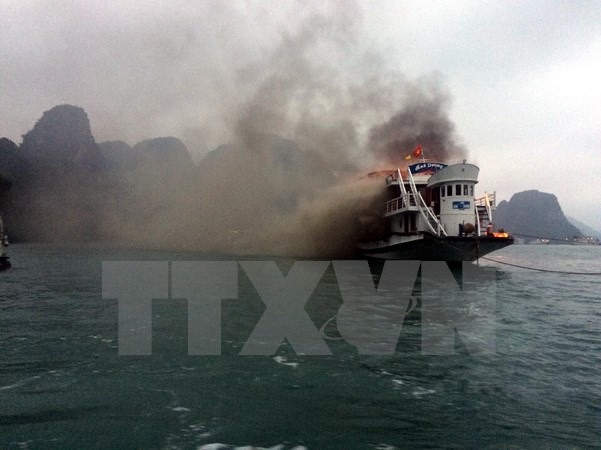 14 Hạ Long Bay cruise boats suspended