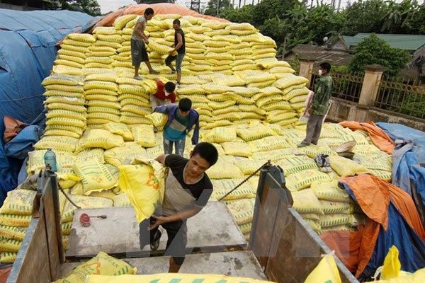 Temporary duties on fertiliser may hurt farmers