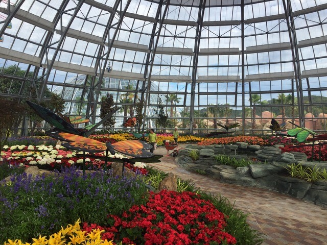 Vinpearl Land to launch botanical park