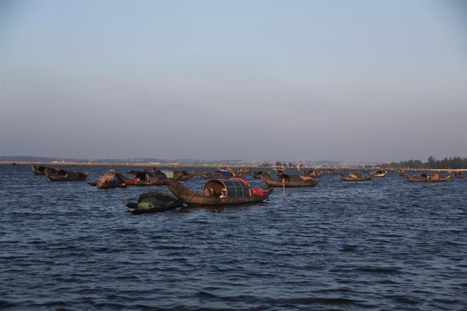 Fingerlings released in Huế lagoon