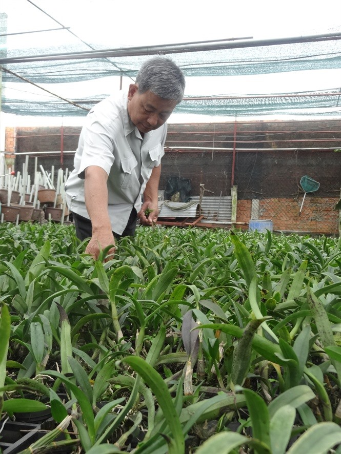 City focus on hi-tech agriculture