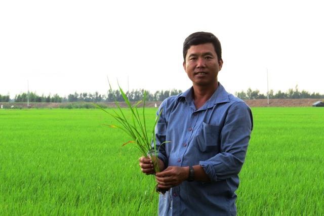 Đồng Tháp farmer profits from thinking big
