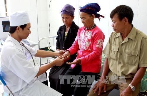 Mysterious skin disease kills 1 in Quảng Ngãi