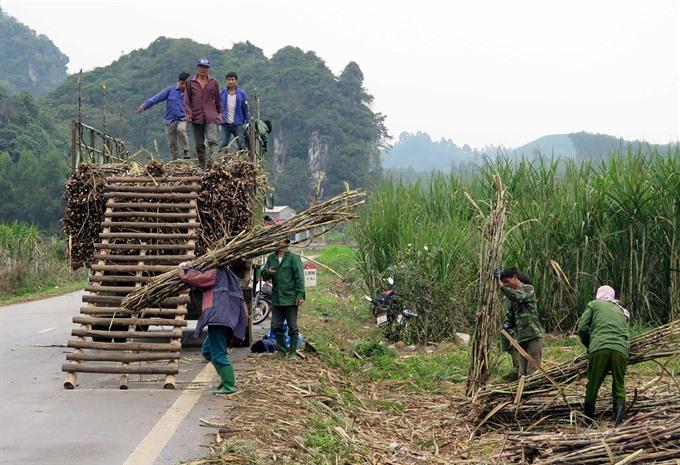 ATIGA regulation worries local sugar manufacturers